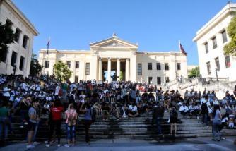 Resultado de imagen para Cuba avispero juvenil